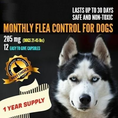 12 Monthly Capsules Flea Control 205mg Dogs 21-45 lbs FAST Ship