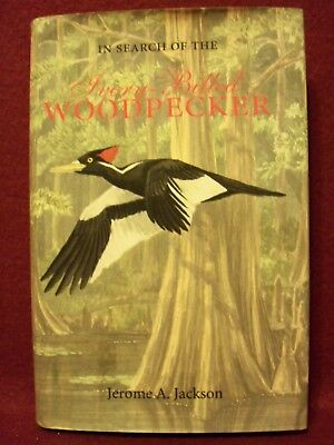In Search of the Ivory-Billed Woodpecker by Jerome A. Jackson (2004, Paperback)
