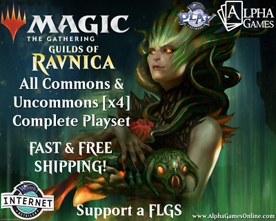 Guilds of Ravnica Complete Playset Commons & Uncommons x4 Set FREE&FAST SHIPPING
