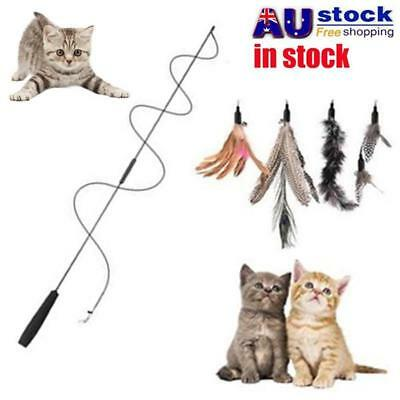 5X Kitten Pet Cat Teaser Turkey Feather Interactive Fun Toy + Wire Chaser Wand