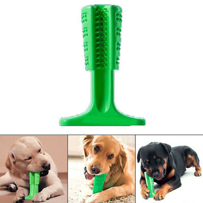 Bristly Brushing Stick World's Most Effective Toothbrush for Dogs Pets Oralcare