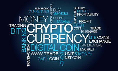 USB loaded with Basic and Advanced Cryptocurrency Videos how to Buy & Trade