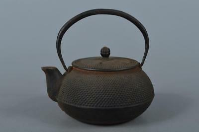 M3128: Japanese Old Iron Arare pattern TEA KETTLE Teapot Tetsubin, Iwachu made