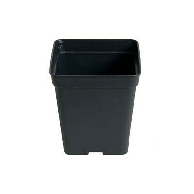 10x Black Square Growing Pots for Plants - 11x11x12cm (1L)