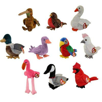 TY Beanie Babies - BIRDS #1 (Set of 10)(Beak, Early, Jabber, Kuku, Pinky, Mac++)