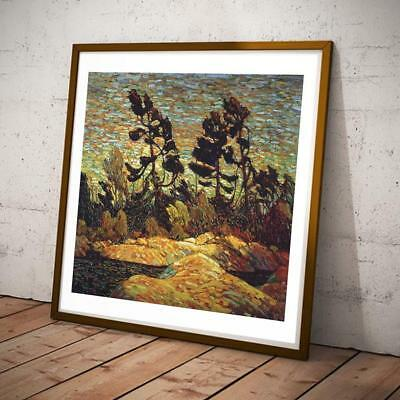 Tom Thomson Canadian Post Impressionist Group Seven 07 18x17 INCHES