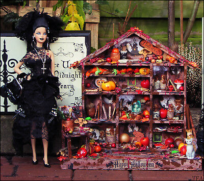 Puppenstube Hexenküche Unikat Ooak Display Halloween Barbie Fashion Royalty