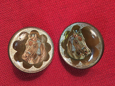 Pair of Antique Horse Flat Face Glass Bridle Rosettes / Buttons Scarce