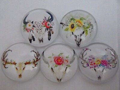 Set Of 5 X 25mm Glass Dome Cabochons - Assorted Skull Flowers Designs. (3)