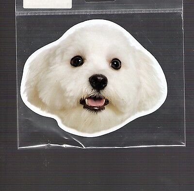 Maltese 4 inch face magnet for car or anything metal     New