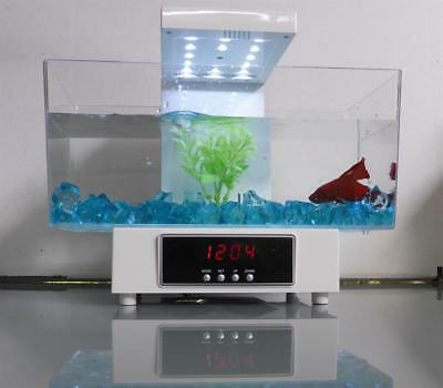 USB White Desktop Aquarium Betta Fighting Fish Tank Home Office Blue Stones