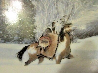 "JULIE KRAMER COLE ""WOLF RIDGE"" Camouflage WOLVES American Nature coa, box"