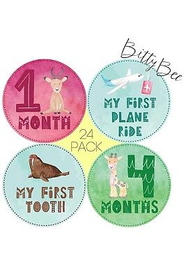 Baby Monthly Milestone Stickers – 24 Onesi Belly Stickers for First Year