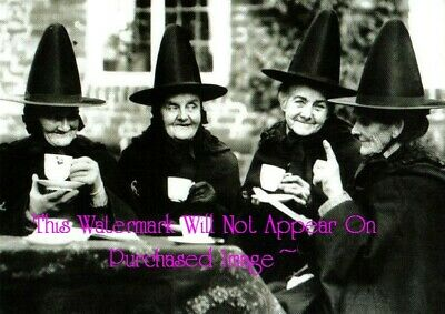 Old VINTAGE Antique Bewitching BLACK WITCH TEA PARTY Photos Photographs Reprint