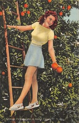 BEAUTIFUL BRUNETTE~ORANGE PICKING TIME IN SUNNY FLORIDA POSTCARD 1940s