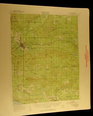 Grayling Michigan 1955 vintage USGS Topographical chart map