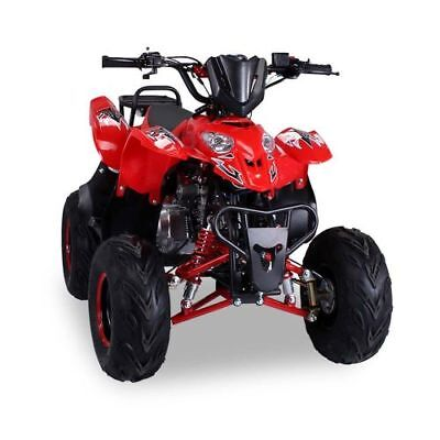 Quad 125cc S-5 rot Miniquad ATV Kinderquad Pocketquad Pocketbike Kinderquad