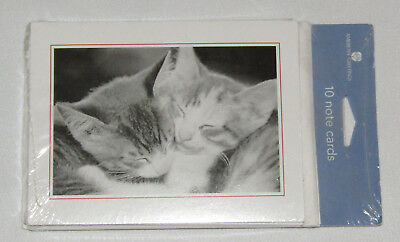 Cats Notecards New Set of 10 with Envelopes Kittens Snuggling Blank Inside