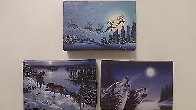 Battery Operated Mini Led Light Canvas Picture 15 x 10cm (Choice of 2)