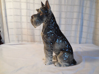 "Vintage porcelain Schnauzer shafford The kennel club large figure 11.5"" 1940's"