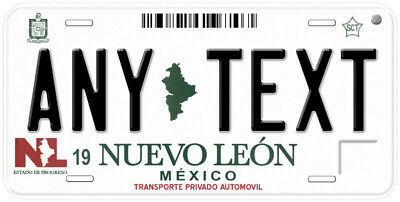 Nuevo Leon Mexico Any Name Number Novelty Auto Car License Plate C01