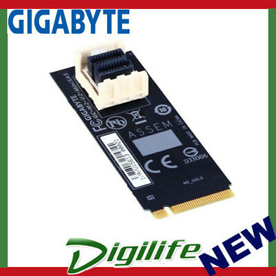 Gigabyte M2-U2-MINISAS M.2 to U.2 Mini SAS Add-on Card Adapter for SSD NVMe PCIe