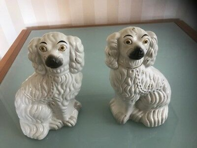 Genuine Antique Victorian pair of Staffordshire Spaniels