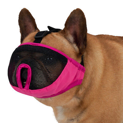 Muzzle For Short Nosed Breed Dogs Frenchy Bull Dog Boxer Boston Terrier Mask