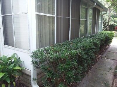 Property For sale in Lakeland, FL, $91,000.00! MUST SEE!