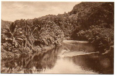 """Dominica Tuck postcard """" The Layou River"""""""