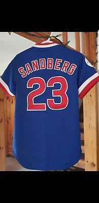 quality design f5043 e8e3d MITCHELL & NESS Ryne Sandberg 1984 Authentic Jersey Chicago ...