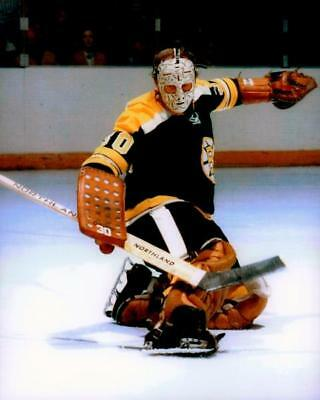 Gerry Cheevers Boston Bruins 8x10 Photo