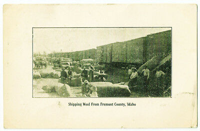 Idaho Shipping Wool from Fremont County Antique Postcard