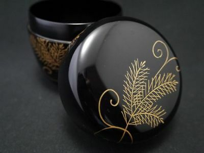 Japanese Lacquer Wooden Tea caddy IVY with Pine design makie Natsume  (911)