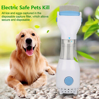 Handheld Hair Electric Flea Comb Capture Head Lice Removal for Pet Dog Cat Puppy