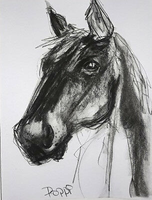 ORIGINAL ART DRAWING * Charcoal on Art paper * HORSE *Art By Poppi