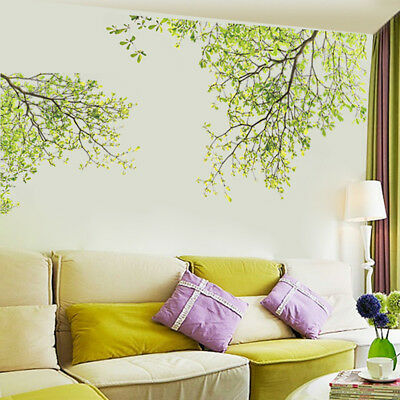 Family Green Tree Wall Stickers Vinyl Art Home Decals Room Decor Mural Branch AU