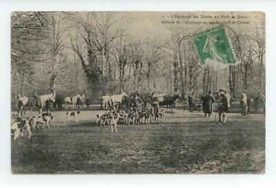 Cpa 1908 Gros Plan Anime Chasse A Cour Equipage Foret De Dreux Be