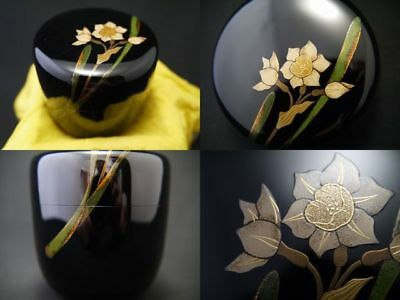 Japanese Traditional Lacquer Wooden Tea caddy NARCISSUS makie Natsume (928)