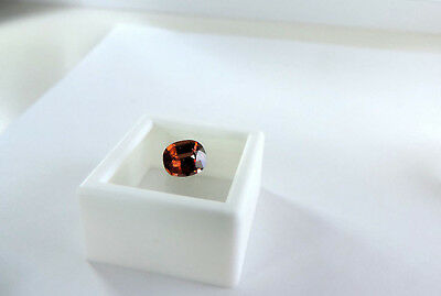 1.55ct Padparadscha Zircon. The most sought after zircons in market Cut by Me
