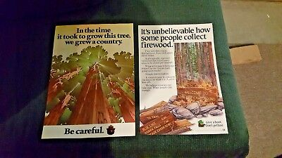 Two Posters, One Smokey Bear, One Woody Owl, Original, Forest Service 18.5x13""