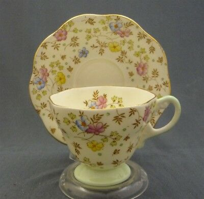 Vintage HAND PAINTED EB Foley Spring Flowers English Bone China Tea Cup & Saucer