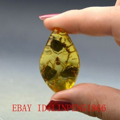 Fossil Branch Natural Burmite Amber 100 million years old (Untreated)39ct