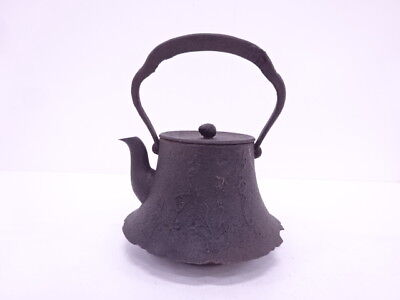 3843733: Japanese Nanbu Tekki Iron Kettle / Poem Artisan Work
