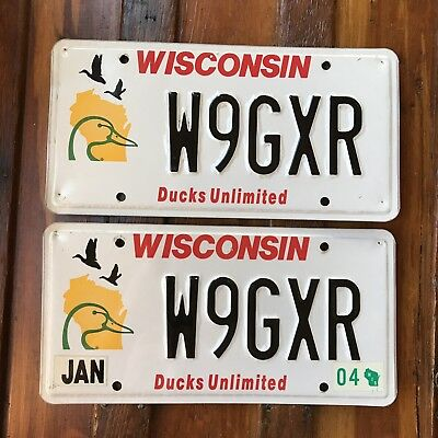 2004 Wisconsin DUCKS UNLIMITED License Plate PAIR Specialty Auto Tag W9GXR