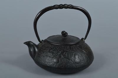 R6050: Japanese Iron Gourd sculpture TEA KETTLE Teapot Tetsubin Tea Ceremony