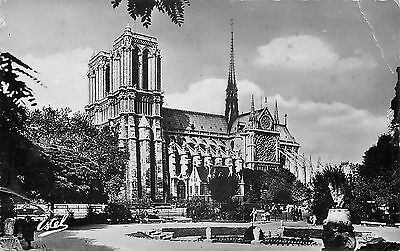 75 Paris Notre-Dame Vue Du Square Viviani - Photo Veritable