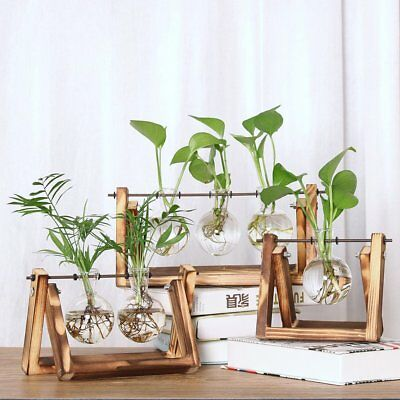 Glass Planter Bulb Vase with Retro Solid Wooden Stand and Metal Swivel Holder OG