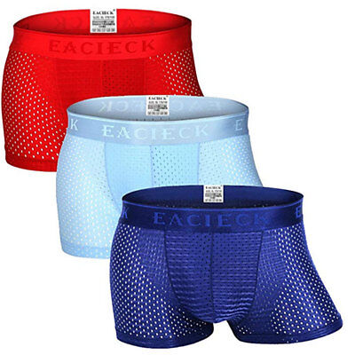 Mens Ice Silk Mesh Breathable Underwear Shorts Boxer Briefs Trunks Underpants