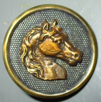 """Antique Victorian Metal Picture Button - Brass Horse On Screen Back - 1 1/8"""""""